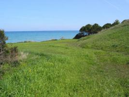 Foto 3 Unser Angebot auf der Insel Zakynthos/Griechenland