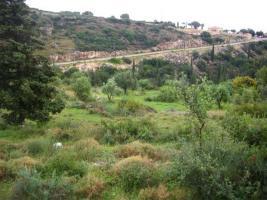 Unser Angebot auf der Insel Zante/Griechenland