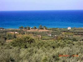 Unser Angebot auf der Insel Zante/Ionische Insel/Griechenland