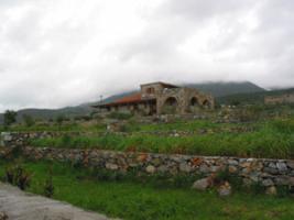 Foto 5 Unser Angebot in Messinia/Peloponnes/Griechenland
