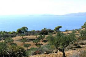 Unser Angebot in der N�he vom Kap Akritas/Peloponnes/Griechenland