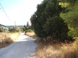 Foto 3 Unser Angebot in Schinias/Halbinsel Attika, nahe Athen/Griechenland