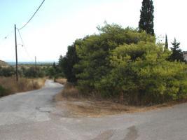 Unser Angebot in Schinias/Halbinsel Attika, nahe Athen/Griechenland