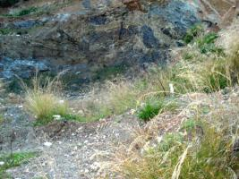 Unser Angebot nahe der Halbinsel Methana/Griechenland