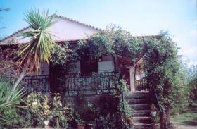 Unser Angebot nahe der Kleinstadt Galatas/Peloponnes/Griechneland