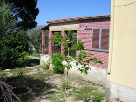 Unser Angebot nahe der Ortschaft Alepohori bei Korinth/Griechenland