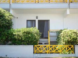 Unser Angebot nahe der Ortschaft Pefkohori/Griechenland