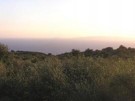 Unser Angebot nahe der Ortschaft Stupa/Peloponnes/Griechenland