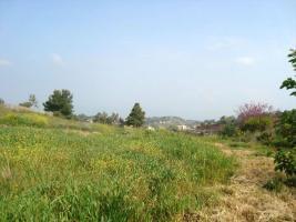 Unser Angebot nahe der Ortschaft /Markopoulou/Oropou bei Athen/Griechenland