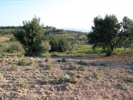 Unser Angebot nahe Porto Heli/Argolida/Griechenland