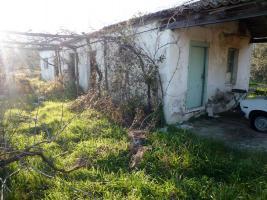 Unser Angebot nahe Sarti/Griechenland