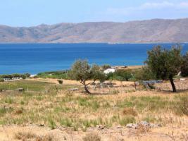 Unser Angebot nahe der Stadt Karystos auf Evia/Griechenland