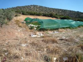 Foto 4 Unser Angebot nahe der Stadt Nafplion/Peloponnes/Griechenland