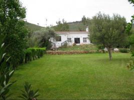 Foto 2 Unser Angebot nahe der Stadt Nea Makri/Halbinsel Attika/Griechenland