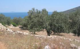 Unser Angebot nahe Xiropigado/Griechenland