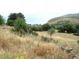 Foto 2 Unser Angebot auf der schönen Insel Evia/Griechenland