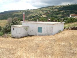 Unser Angebot auf der schönen Insel Evia/Mittelgriechenland