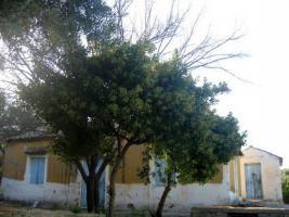 Unser Angebot in der sch�nen Mani/Peloponnes/Griechenland