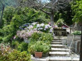 Foto 2 Unser Angebot auf dem schönen Pilion/Griechenland