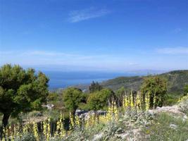 Unser Angebot auf dem schönen Pilion/Mittelgriechenland