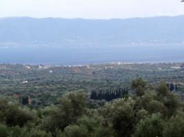 Foto 2 Unser Neubau Angebot auf der Insel Evia/Griechenland