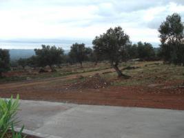 Foto 3 Unser Neubau Angebot auf der Insel Evia/Griechenland