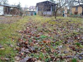 Uriger Garten am Badesee abzugeben