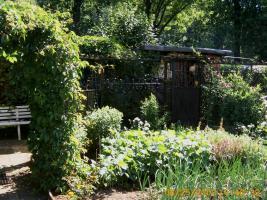 Foto 2 Verkauf Kleingarten