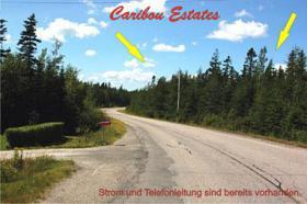 Foto 3 Verkauf..Waldgrundstück....12900 qm in Kanada