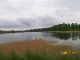Foto 2 Verkaufe