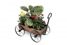 Foto 4 Verkaufe Dekoartikel für Haus und Garten