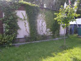 Foto 6 Verkaufe Garten zur Pacht 425 qm mit Werkstatt