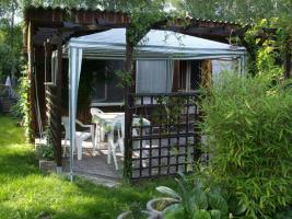 Foto 8 Verkaufe Garten zur Pacht 425 qm mit Werkstatt
