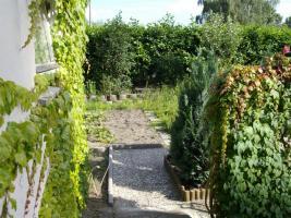 Foto 11 Verkaufe Garten zur Pacht 425 qm mit Werkstatt