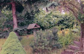 Foto 2 Verkaufe Garten / Kleingarten mit Bungalow Massiv in Cottbus Sielow am Wald