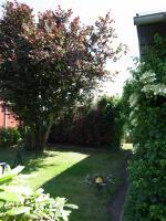 Foto 13 Verkaufe Garten, Möbeliert, Dusche WC, Poolanlage uvm.