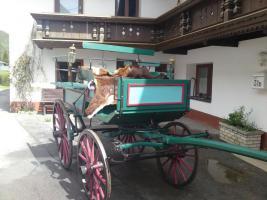 Verkaufe Landauer Kutsche