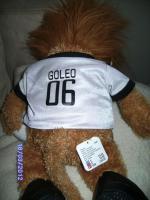 Foto 2 Verkaufe Plüsch Goleo Maskottchen ca.42 cm groß