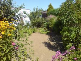 Foto 8 Verkaufe gepflegten Kleingarten in Ribnitz-Damgarten/ Nähe Ostsee