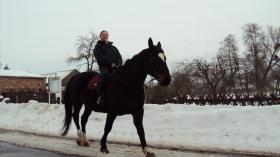 Foto 3 Verkaufe wegen Trennungsfall meine Pferde leider