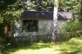 Foto 5 Verkaufen bei 06901 Kemberg großes Freizeitgrundstück mit Wald
