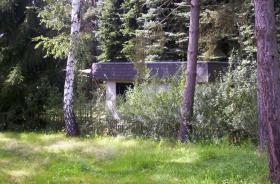 Foto 7 Verkaufen bei 06901 Kemberg großes Freizeitgrundstück mit Wald