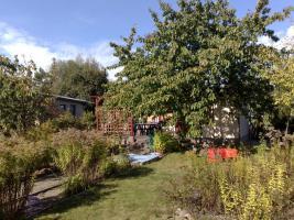 Foto 2 Verkaufen großen 350qm² Garten in Schwerin
