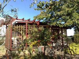 Foto 3 Verkaufen großen 350qm² Garten in Schwerin