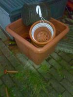 Foto 5 Verschd. Gartensachen