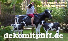 Verschenken Sie doch eine Deko Kuh an Ihre Nachbarn in Ihrer Strasse … www.dekomitpfiff.de
