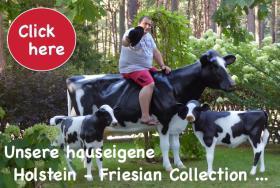 Foto 3 Verschenken kann So einfach Sein zb; ne Deko Kuh oder Deko Pferd ...