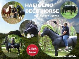 Foto 4 Verschenken kann So einfach Sein zb; ne Deko Kuh oder Deko Pferd ...