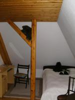 Foto 5 Villa im Elsass, 20 km von Baden-Baden