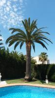 Foto 10 Villa in Javea zu vermieten 2für1 Woche